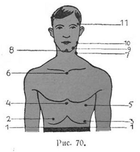 Удары. Ликбез    Легче всего нокаут достигается ударом по  подбородку (рис. 8 и 9) и по углу челюсти (рис. 7, 10). Эти удары  ведут обычно к полной потери сознания, которая происходит вследствие  того, что кровенос…