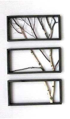 Ramas de 'birch' enmarcadas