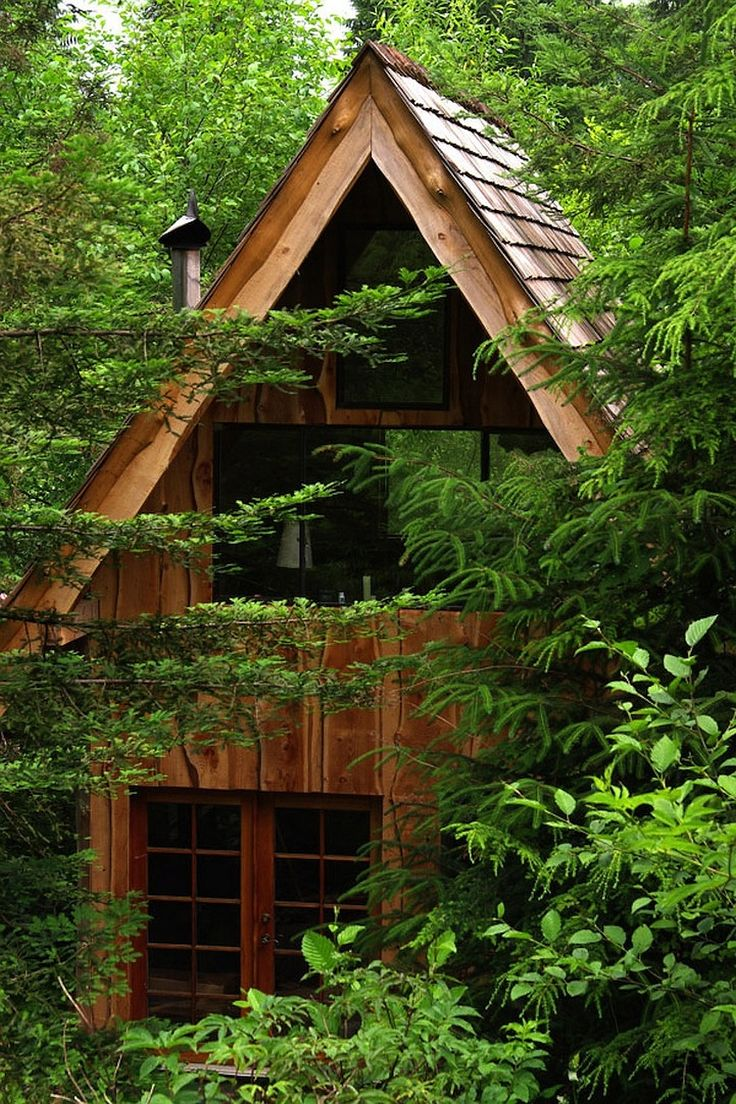 Best Forest House Ideas On Pinterest Skylight Bedroom - Guy discovered middle woods incredible