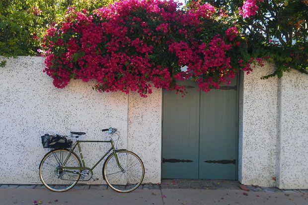 Viata de zi cu zi continua sa ne ofere subiecte fascinante pentru fotografie! Fie ca este vorba de un detaliu din gradina de acasa, fie de un apus frumos in drum spre casa, ai o multime de motive s...
