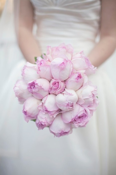 Best 25 Cabbage Rose Bouquet Ideas On Pinterest