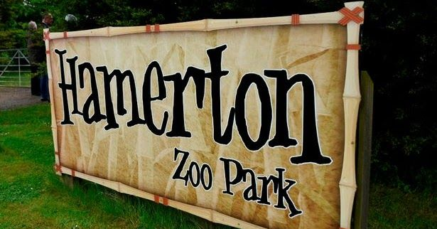 A female zookeeper has been killed in a horrific tiger attack at Hamerton Zoo it has been confirmed.  The zoo was evacuated on Monday morning amid scenes of chaos as visitors told how they heard blood-curdling screams at the attraction.  A Cambridgeshire Police spokesman said: Officers attended a serious incident at Hamerton Zoo Park Steeple Girding at around 11.15am today.  A tiger had entered an enclosure with a keeper. Sadly the female zoo keeper died at the scene.  At no time did the…