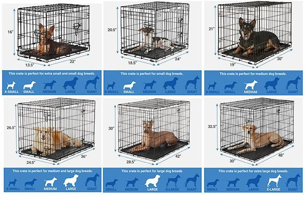 Finding The Best Dog Crate For Your Dog Dog Crate Sizes Dog