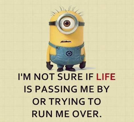 It's Make Me Laugh Wednesday: Minion Madness edition. Why? Because Minions make me smile. I hope they do the same for you.