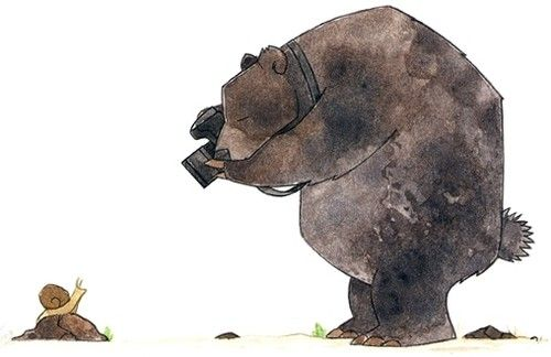 what a great bear THINK HE FIND HIS SNAIL 8)