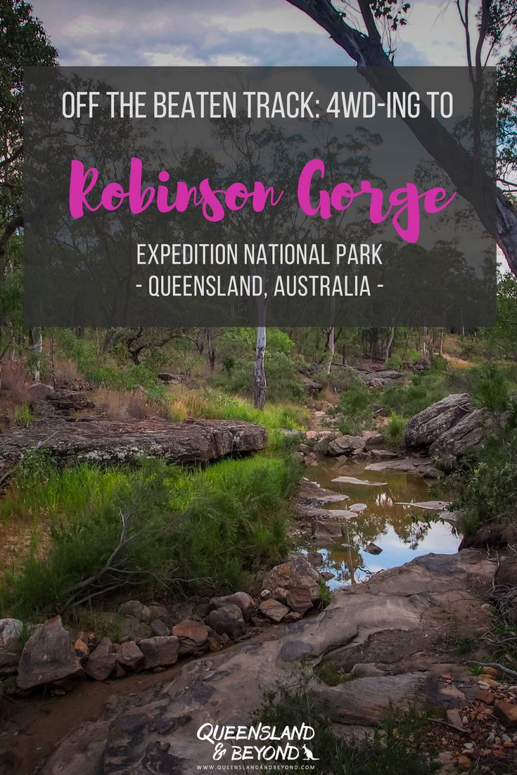 Expedition National Park in Queensland is a remote and unknown spot in Australia. But there are some fabulous short walks to Robinson Gorge, including the more adventurous gorge walk. Expedition definitely gets you off the beaten track and into 4WD adventure land! We had less than 24 hours but it should have been so much more. 🌐 Queensland & Beyond #expeditionnationalpark #nationalpark #queensland #4WD #camping #australia