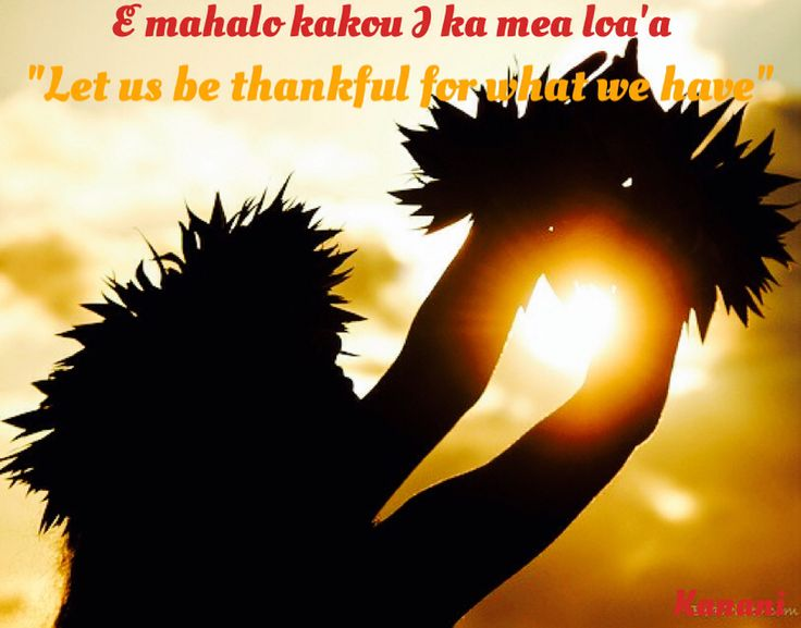 how to say i love you in hawaiian language