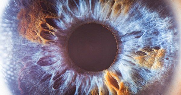 If you want to see up close the window to the soul, then look no further than photographer Suren Manvelyan's Your Beautiful Eyes series. In this exhibition, Manvelyan beautifully captured the eyes of over 40 individuals with an astonishing amount of detail. His pictures reveal the sort of...