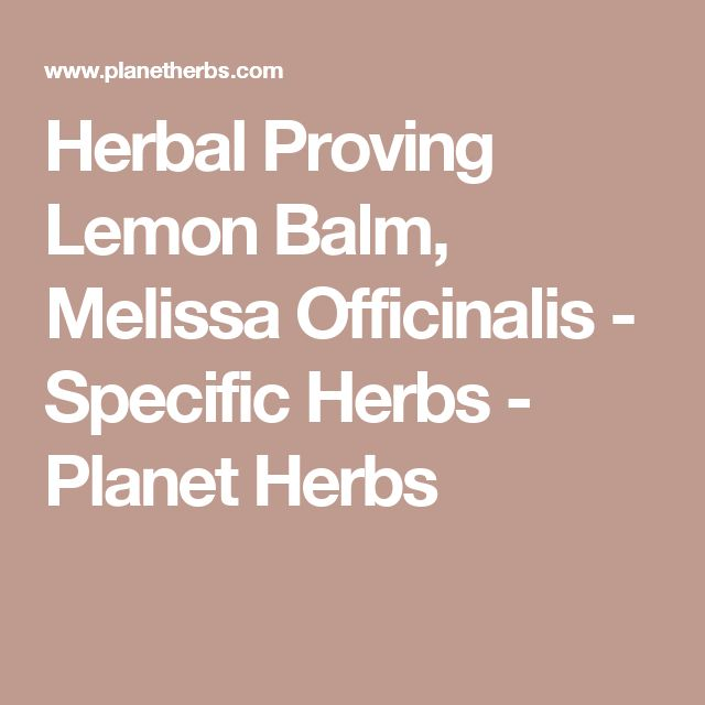 Herbal Proving Lemon Balm, Melissa Officinalis - Specific Herbs - Planet Herbs