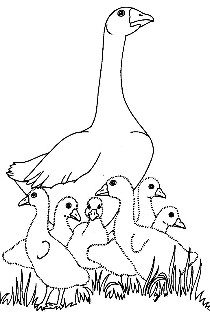 charlotte's web coloring pages | Geese Coloring Pages - Coloringpages1001.com