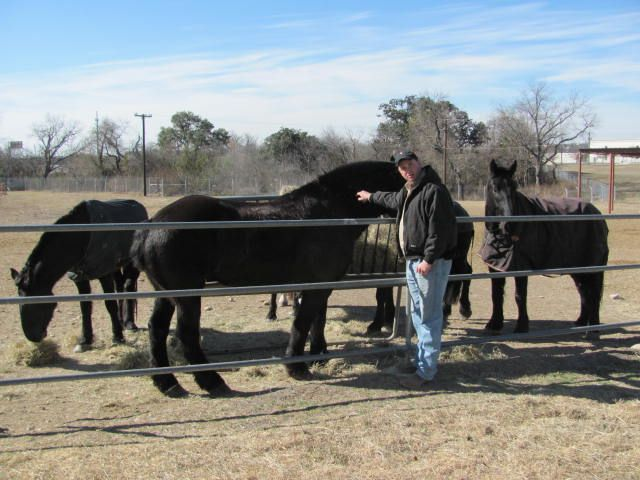 May 2014 Field Trip – The Caisson Barns at Fort Sam Houston in San ...