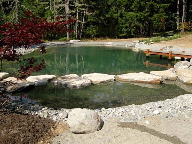 17 best images about farm ponds on pinterest swimming for Koi fish farm near me