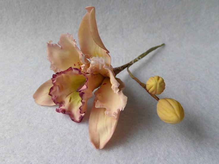 Orchid sugar flower paste