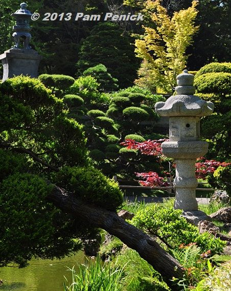 1000 Images About Japanese Tea Garden San Francisco On Pinterest Gardens Ca Usa And