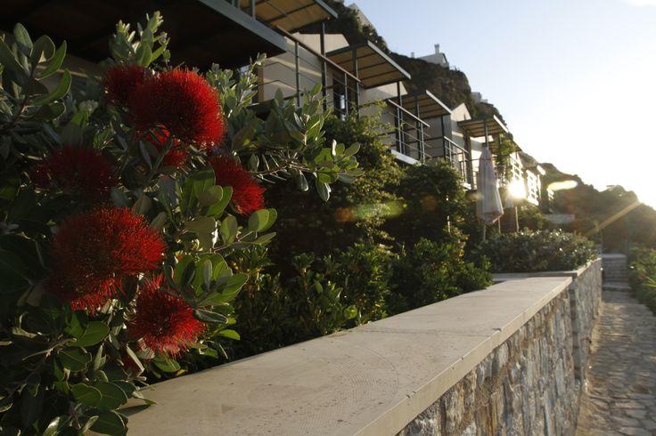 Platanias vacation rental Beach holiday in Crete