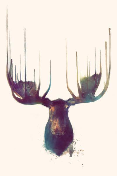 Moose,amy hamilton, canvas, dry ink, illustration, animals, watercolors, aquarel, Art Print