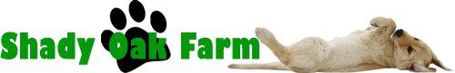 Goldendoodles Breeders Newburg Maryland | Miniature Goldendoodles Sales Maryland - Shady Oak Farm