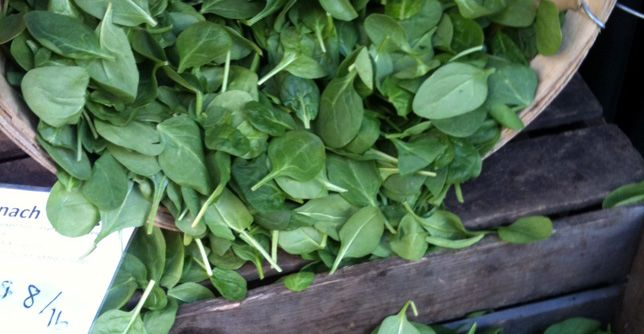 Snacking on super-healthy spinach is great for health, but this dark leafy green is especially susceptible to contamination by bacteria like E. coli. Last week, a University of Illinois professor invented a new, much more effective way of cleaning spinach.  http://greatist.com/health/safer-spinach-ultrasound-120312