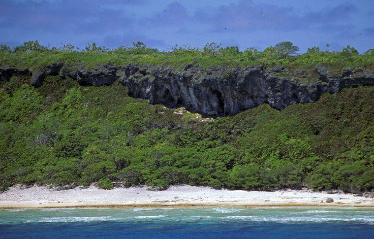 Henderson Island, Pitcairn Island group, United Kingdom of Great Britain and Northern Ireland. Inscription in 1988. Criteria: (vii)(x)