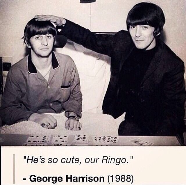 222 best Beatles- George & Ringo images on Pinterest ...