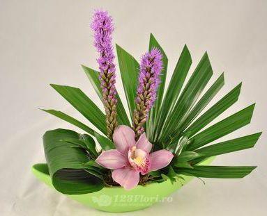 Flori Prezidiu: Aspidistra, Orhidee (Cymbidium), Liatris, Palm blad (Chamaerops), Ruscus Olanda