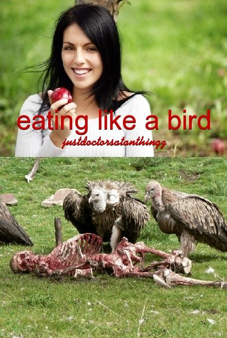 Dark morbid humor justdoctorsatanthingz for See more com