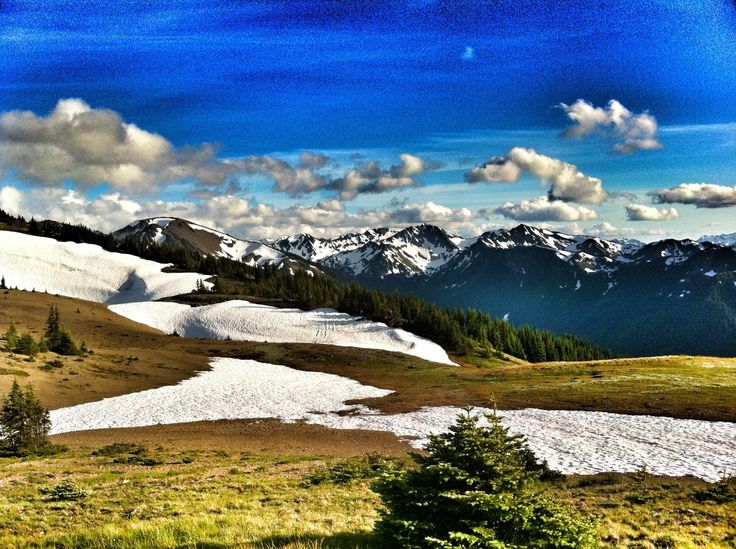 Olympic National Park Visitor Center (Port Angeles, WA): Top Tips Before You Go - TripAdvisor