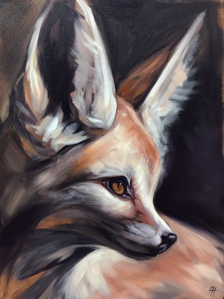 "Original animal paintings by California artist, Aimée Rolin Hoover: ""Fennec Fox"" / 18"" x 24"" / aimeehoover.com"