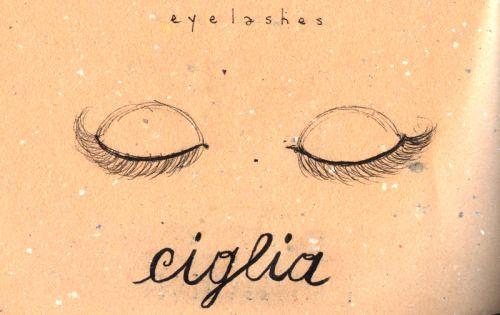 Learning Italian Language ~ Ciglia (EYELASHES) IFHN