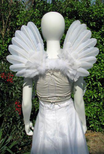Back view of upright cherub angel wings
