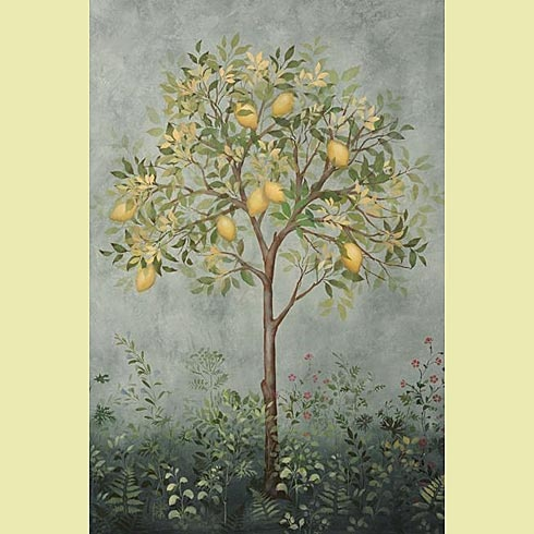 Fresco stencils!Large Citrus, Trees Stencils, Stencils Design, Murals Stencils, Cutting Edge Stencils, Wall Stencils, Large Trees, Citrus Trees, Cut Edging Stencils