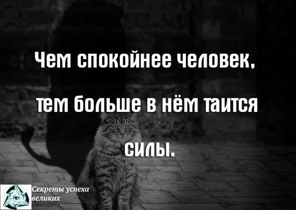 Чем спокойнее человек, тем больше в нём таится силы.