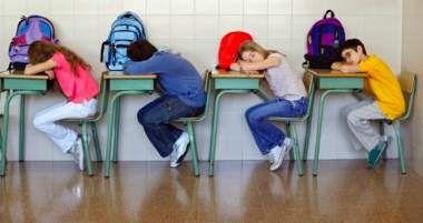 """Tuesday, 07 July 2015 Education Secretary's Dangerous """"Public Boarding Schools"""" Agenda Written by  Alex Newman"""