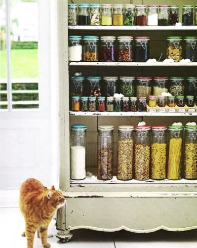 Love the jars but, the little white mice and the orange cat make the pic!