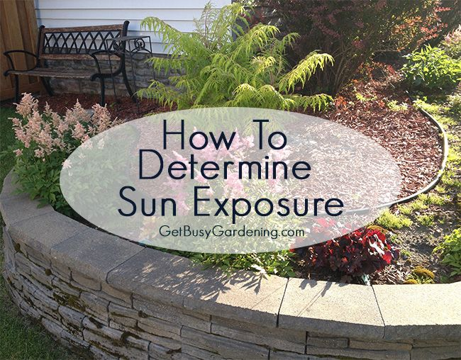 How to determine sun exposure