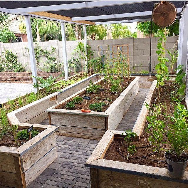 Hinterhof provisorischen Garten Hinterhof provisorischen Garten Die Post …   – Sichtschutz Garten