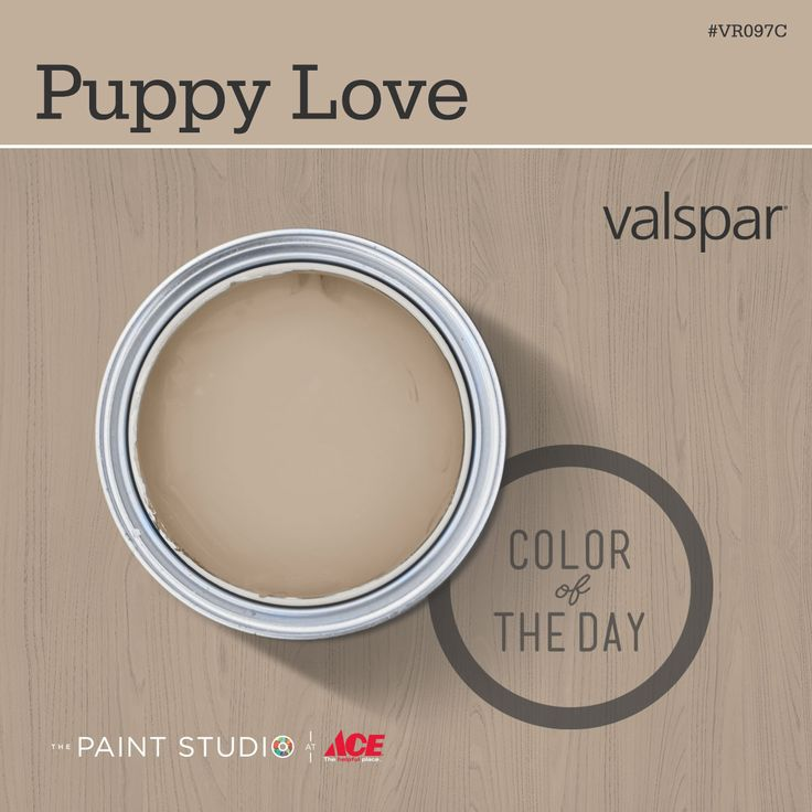 Color of the Day: Puppy Love by #Valspar #31DaysofColor #paint #inspiration #thepaintstudio