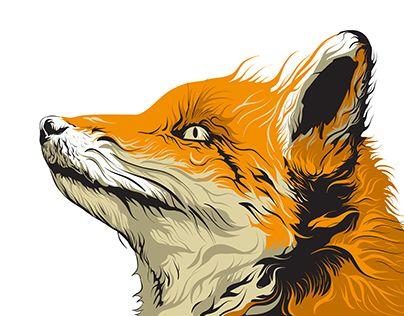 "Check out new work on my @Behance portfolio: ""Fox Detailed Artwork"" http://be.net/gallery/54592773/Fox-Detailed-Artwork"