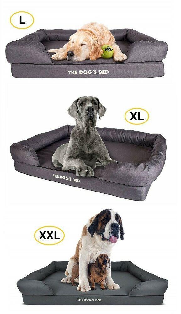 Premium Orthopedic Waterproof Memory Foam Dog Beds L Xl Xxl Grey