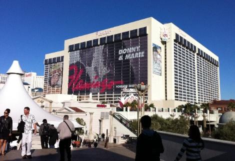 Het Flamingo casino was het derde casino dat er op de Strip werd gebouwd en is momenteel het oudste resort op de Strip dat vandaag de dag nog steeds in bedrijf is. Een beroemde en beruchte maffia baas Bugsy Siegel was rond 1946 eigenaar van The Flamingo Hotel & Casino, deze mobster Bugsy Siegel werd niet veel later vermoord.