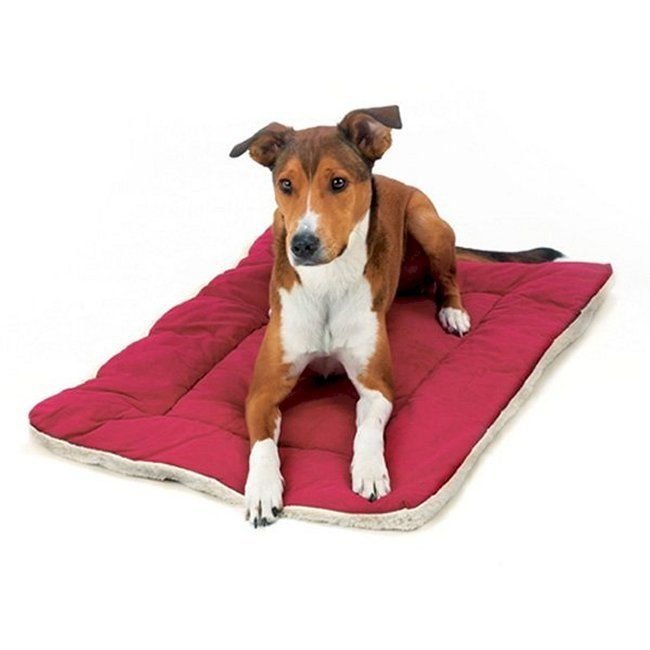 17 best images about dog crates covers cushions on for Best dog door for winter