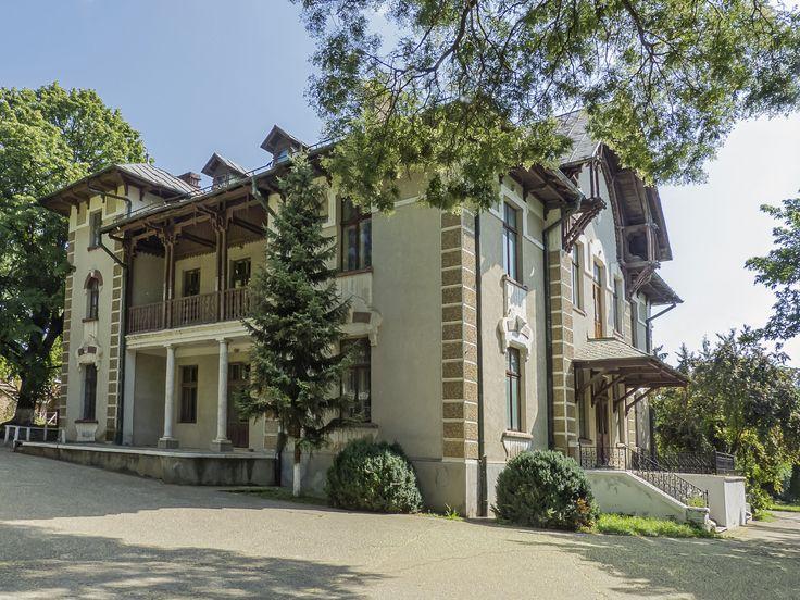 Castelul Vlădoianu, construit în anul 1901 de fostul guvernator al Băncii Naţionale, Vlădoianu, căsătorit cu Raliţa Balş, descendentă a boierului Balş. La construirea castelului s-a folosit un proiect italian şi materiale aduse din Italia. Castelul are o bibliotecă de interes naţional;