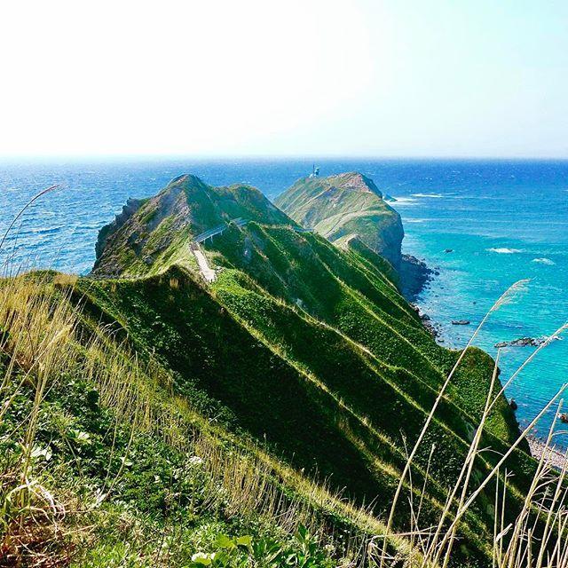 【taichan_traveler】さんのInstagramをピンしています。 《☆北海道☆2016年5月17日〜18日(2日間)☆ ここから見える海の色が好き‼️☺️💕 そう言えば神威岬の駐車場で前はキタキツネ🦊に会ったけど今回はいなかったなー‼️😂 #japan#日本#hokkaido#北海道#神威岬#海#グリーンチャージ#ブルーチャージ#絶景#日本の絶景#旅行#travel#旅行好きな人と繋がりたい#写真好きな人と繋がりたい#弾丸トラベラー#1泊2日#過去pic》