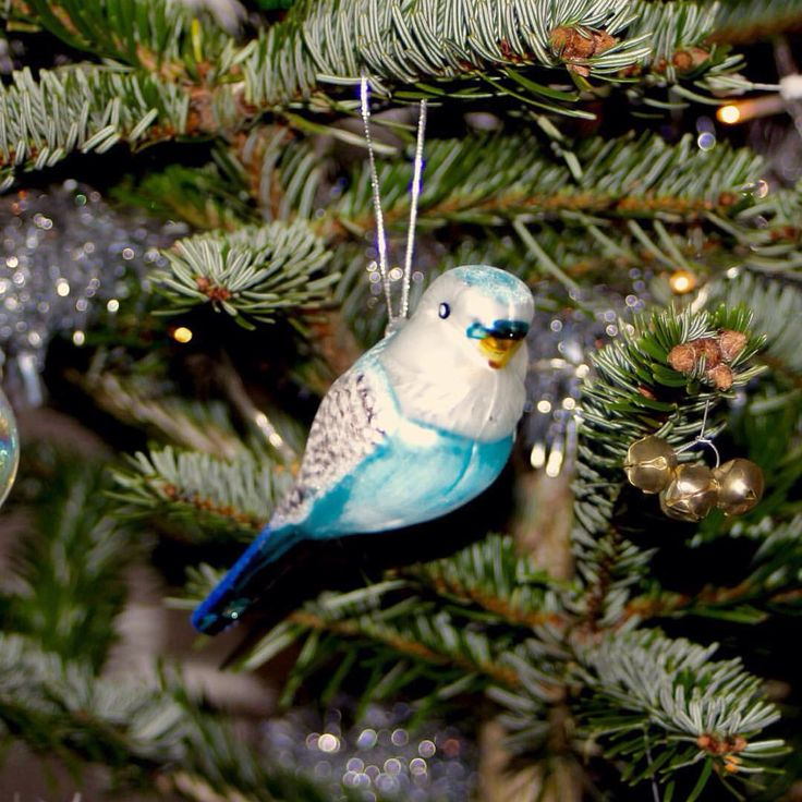 Budgie bauble