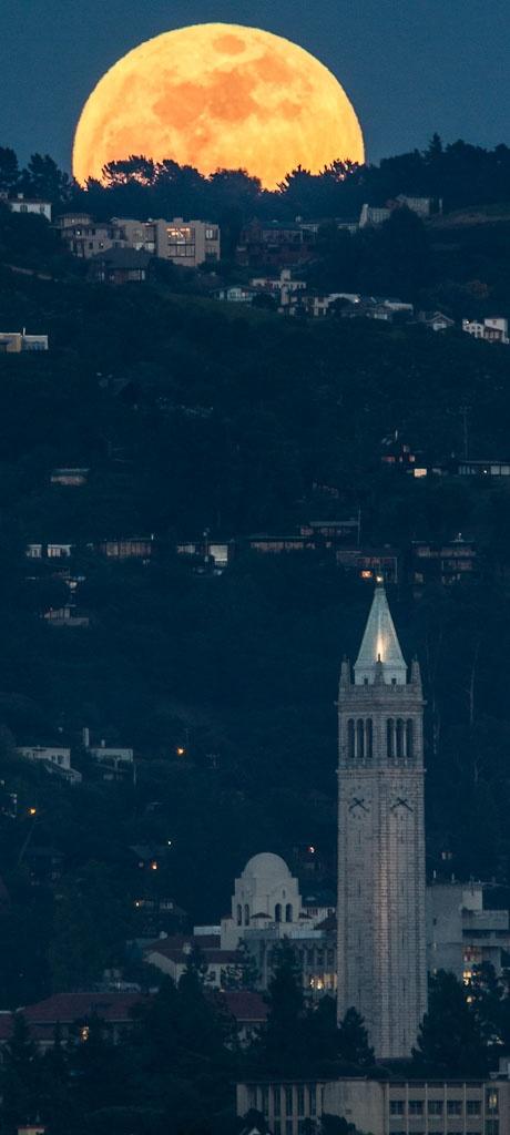 Berkeley by Ira Serkes