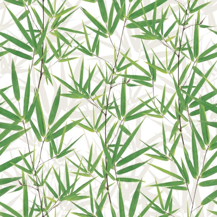 Bamboo style! This quirky wallpaper is from the 'Just like it' collection by Aspiring Walls. Available through Guthrie Bowron.