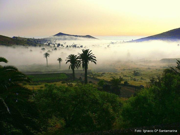 Imagen de Ignacio Garcia Santamarina en Haría, el valle de las diez mil palmeras en el norte de Lanzarote.