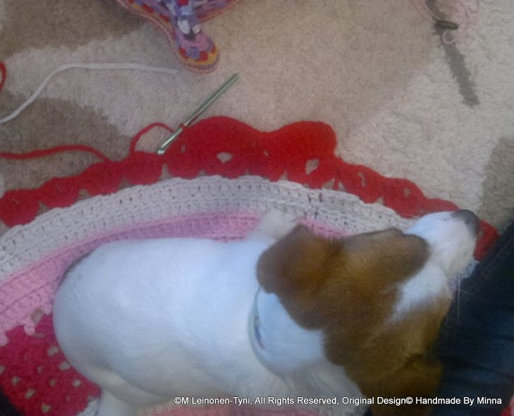 crocheted rug, and my assistant <3