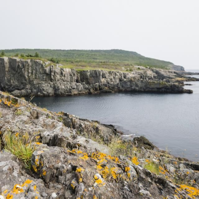 The best hikes in Newfoundland and Labrador