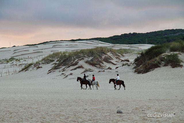 Paseo a caballo por la playa de Valdevaqueros (Tarifa, Cádiz) / A horse ride by Valdevaqueros beach (Tarifa, Cádiz), by @cadizvisual